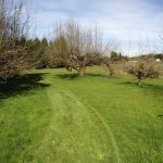 9.21 Beautiful Acres Just Minutes from Salmon Creek! thumbnail photo